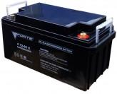 Аккумуляторная батарея Forte F12-65 AGM